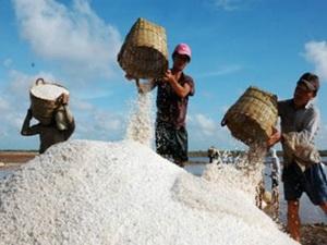 Vinachem khai thác muối mỏ tại Lào