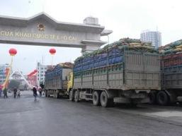 Năng lực cạnh tranh nhìn từ câu chuyện nhập siêu với Trung Quốc