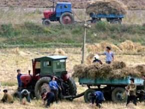 Triều Tiên cải cách tiền tệ, nông nghiệp