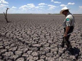 GDP toàn cầu giảm 1,6% mỗi năm do biến đổi khí hậu