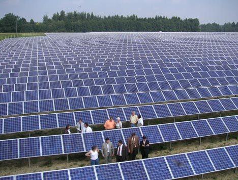 Lập thủ tục đầu tư dự án điện mặt trời tại huyện đảo Lý Sơn