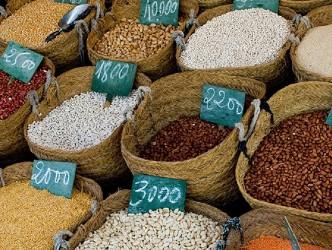 FAO: Chi phí nhập khẩu ngũ cốc của các nước nghèo sẽ tăng kỷ lục