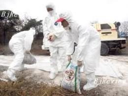 Hàng nghìn người nhiễm khí độc ở Hàn Quốc