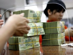 NHNN bơm ròng 43,5 nghìn tỷ đồng trên OMO trong quý III