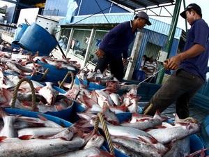 Sản lượng thủy sản Khánh Hòa tăng 21% so với năm ngoái