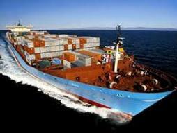 Cổ đông DDM bác bỏ phương án bán 2 tàu container