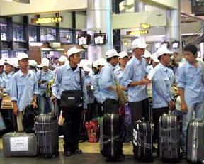 Nhiều thị trường thắt chặt chặt nhập khẩu lao động Việt Nam