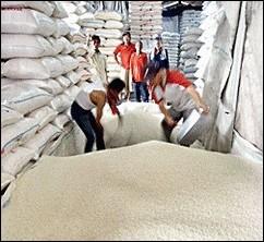 Xuất khẩu gạo Việt Nam trước nguy cơ tụt lại phía sau