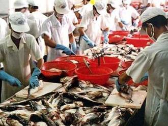 Nhu cầu cá da trơn thế giới tiếp tục tăng mạnh