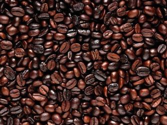 Giá cà phê trong nước giảm 100 nghìn đồng/tấn