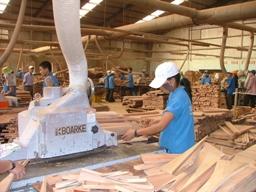 Sẽ tăng thuế xuất khẩu gỗ