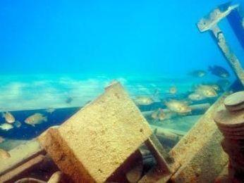 Nga đã tìm thấy xác tàu chở 700 tấn quặng vàng mất tích