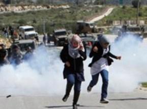 Israel, Hamas nhất trí ngừng bắn