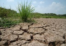 Loài người chỉ có thể sử dụng chưa tới 2,5% lượng nước trên toàn cầu