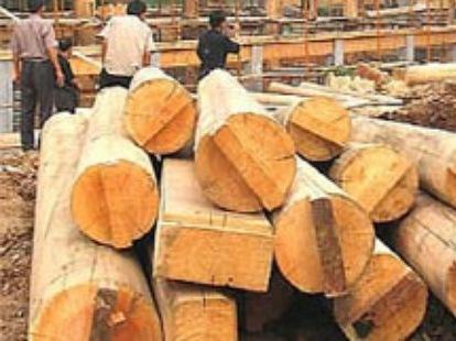 Việt Nam đứng đầu Đông Nam Á về xuất khẩu gỗ và sản phẩm gỗ