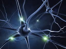 Đại học Cambridge nghiên cứu về sự nguy hiểm tiềm ẩn của trí tuệ nhân tạo