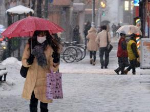 Hàng chục nghìn người Nhật Bản mất điện do bão tuyết
