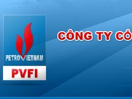 DPM nhận 2 triệu cổ phần Công ty Út Xi để trừ nợ cho PVFI