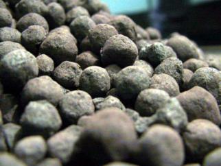 Nhu cầu Trung Quốc kéo giá quặng sắt lên cao nhất 5 tháng