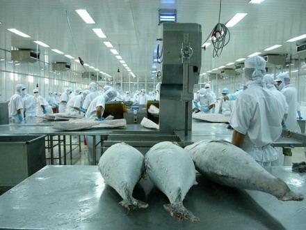 Cần Thơ đưa thủy sản thành ngành kinh tế mũi nhọn