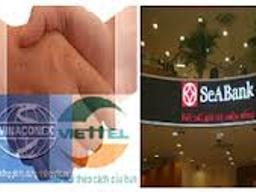 Vụ tranh chấp SeABank-VVF có thể giải quyết dứt điểm trong tháng 1/2013