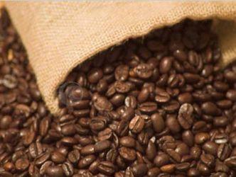 Cà phê trong nước quay đầu giảm mạnh 1 triệu đồng/tấn