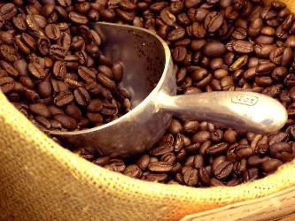 Giá cà phê trong nước quanh ngưỡng 38,4 triệu đồng/tấn