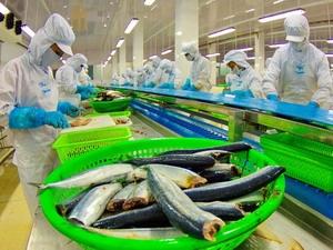 Các công ty bán buôn Australia ưa chuộng hải sản Việt Nam