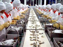 60% doanh nghiệp Nhật Bản có lãi tại Việt Nam