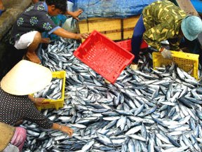 Xuất khẩu thủy sản 2012 đạt 6,13 tỷ USD