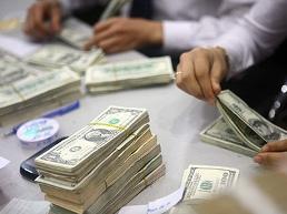 NHNN mua vào khoảng 2 tỷ USD ngoại tệ từ đầu 2013