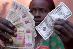 Zimbabwea chỉ còn 217 USD trong ngân sách