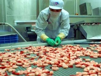 Đề nghị đình chỉ điều tra trợ cấp với ngành tôm Việt Nam