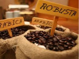 Tổng hợp thị trường cà phê tuần từ 28/1-2/2