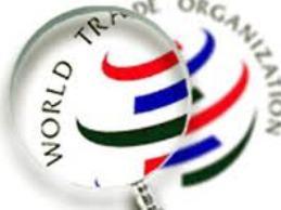 WTO có còn quyền lực?