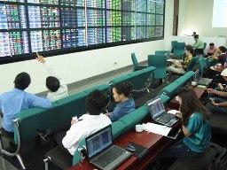 Cổ phiếu cao su đồng loạt tăng giá
