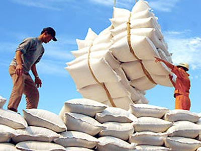 Tổng hợp tin thị trường gạo ngày 5/2/2013