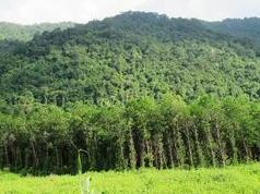 Đất phi nông nghiệp chỉ chiếm hơn 18% diện tích Thái Nguyên đến 2020