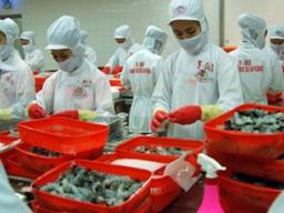MPC lợi nhuận hợp nhất 2012 giảm 68% so với 2011