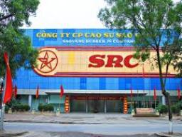 SRC: Kiểm toán Nhà nước lưu ý việc ký kết hợp đồng nhập khẩu nguyên vật liệu