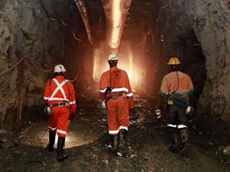Sản lượng vàng AngloGold giảm 20.000 ounce do mất điện tại Nam Phi