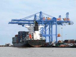 DVP tạm ứng cổ tức đợt 2/2012 bằng tiền tỷ lệ 10%