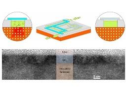 IBM phát triển bóng bán dẫn tạo chip hoạt động như não người