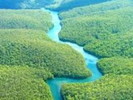 Ecuador bán 1/3 rừng Amazon cho Trung Quốc để trả nợ