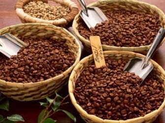 Cà phê trong nước đứng ở mức 43,4 triệu đồng/tấn
