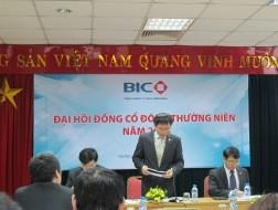 BIC chưa tìm được cổ đông chiến lược
