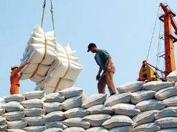 Giá gạo xuất khẩu Việt Nam thấp nhất thế giới