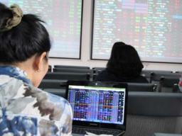Cổ phiếu ngân hàng tiếp tục giảm, VN-Index tăng 4 điểm nhờ GAS, Masan và Vinamilk