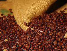 Giá cà phê Tây Nguyên giảm còn 42,7 triệu đồng/tấn