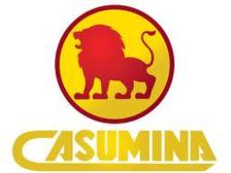 Chủ tịch Hội đồng quản trị Casumina từ nhiệm